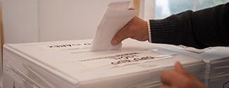 eleccion voto